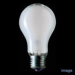 E26 白熱ランプシリカ 200W[54701LW100V200W]